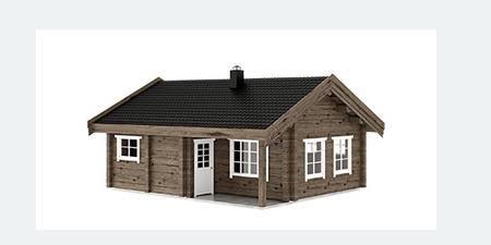 3D rąstinio namo paveikslėlis